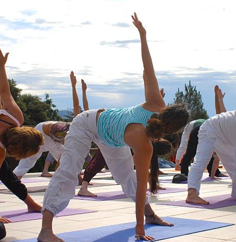 Pilares del Hatha Yoga
